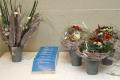 Blumen und Pralinen whe