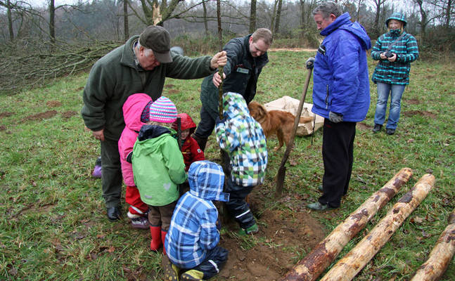 Kinder pflanzen junge Bäume auf einer Freifläche beim Scheelsberg im Naturpark Hüttener Berge